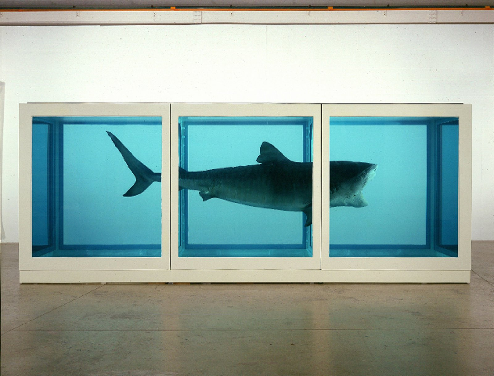 3 DamienHirst ThePhysicalImpossibilityofDeath 7275481