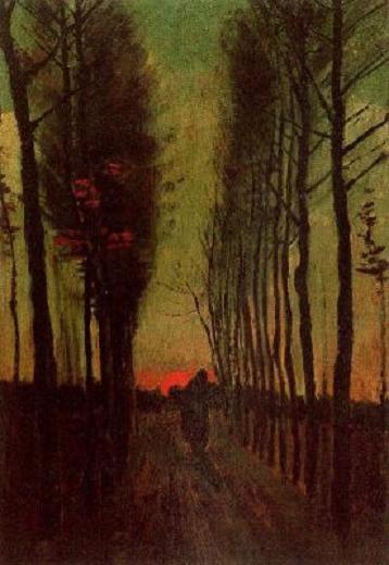 Alameda a la puesta del sol