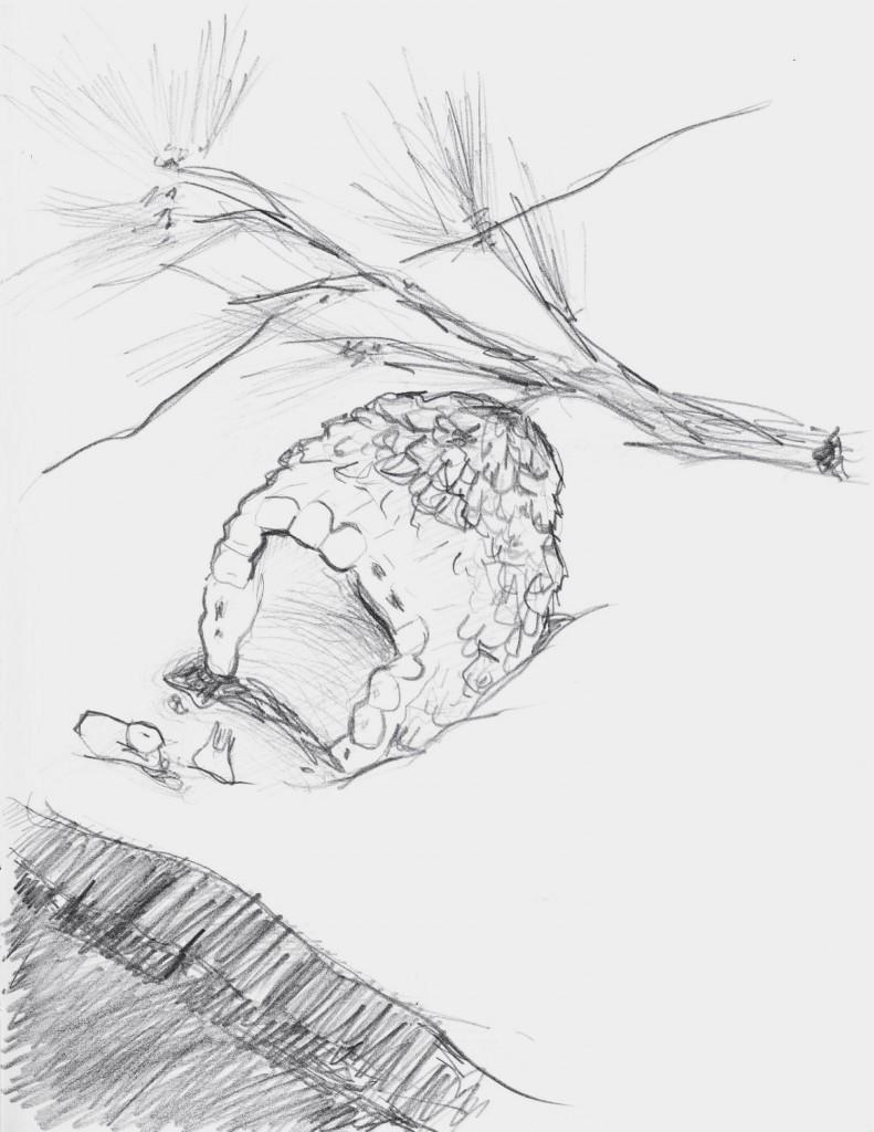 Ilustración de Héctor Quintela