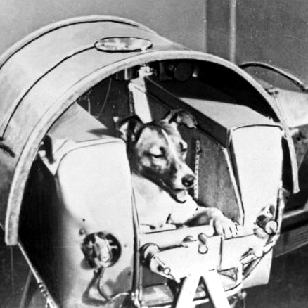 Iván Castelló: La aventura del espacio, de la perrita Laika al macaco Albert