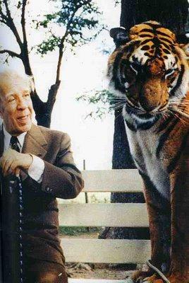 borges tigre