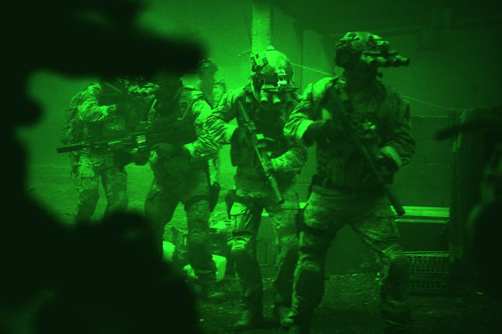 Zero Dark Thirty (6)