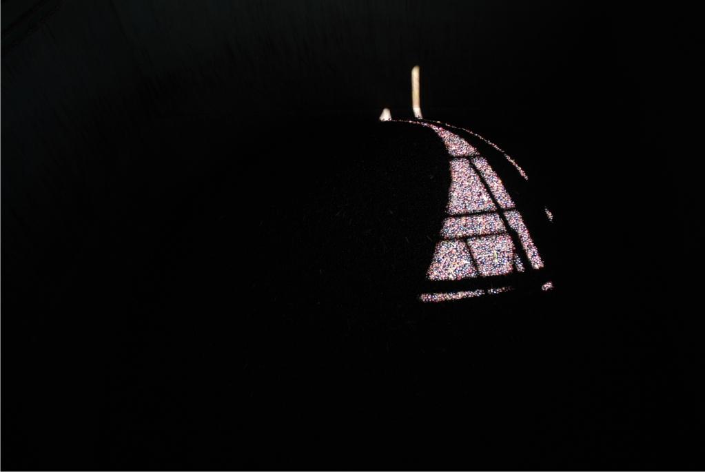 Aceitunas en una tolva, antes de ser procesadas - Fotografía de Pablo Mediavilla Costa