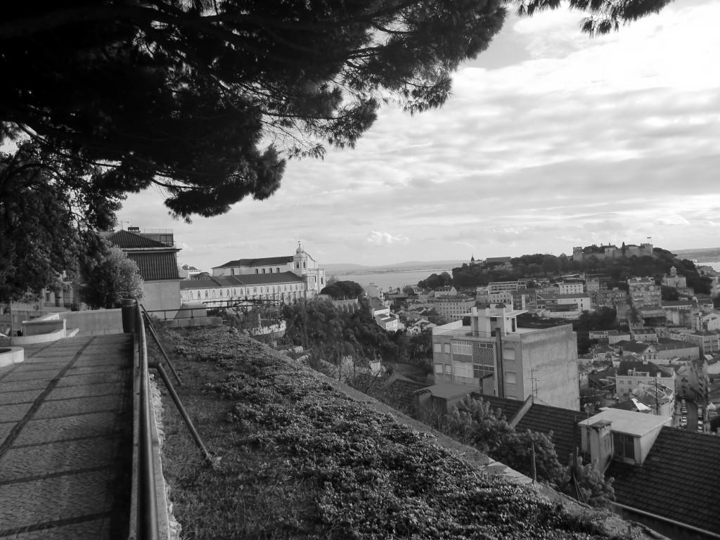 Fotografía de Francesca Savoldi (3)