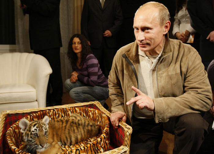 Vladimir Putin p