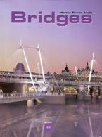 Bridges Torres