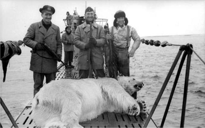 No todo era lanzar torpedos y huir de las cargas de profundidad, a veces también cazaban osos polares
