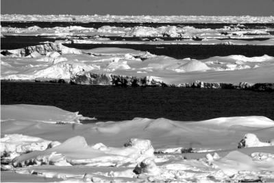 LaAntártida, el continente olvidado