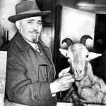 Una cabra, una maldición y muchos periodistas borrachos