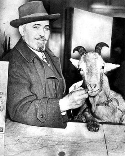William Sianis y su cabra Murphy