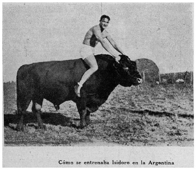 1929 Mayo 218 revist boxeo con toro