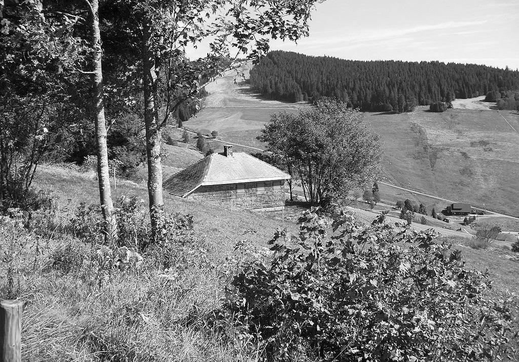 La cabaña de Martin Heidegger. Foto de Muesse (CC)