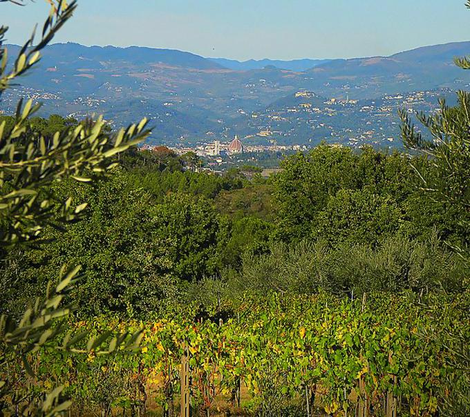 Vista de Florencia desde SantAndrea in Percussina foto de Tania Calamassi.