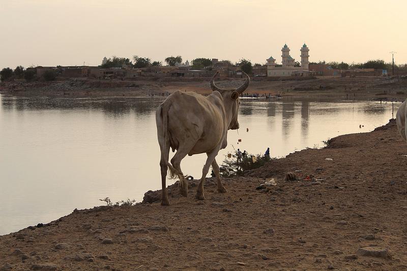 Mauritania 6