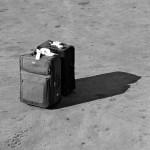 La «movilidad exterior», o cómo nos fuimos de España