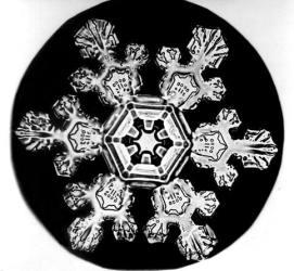 Cristal de hielo