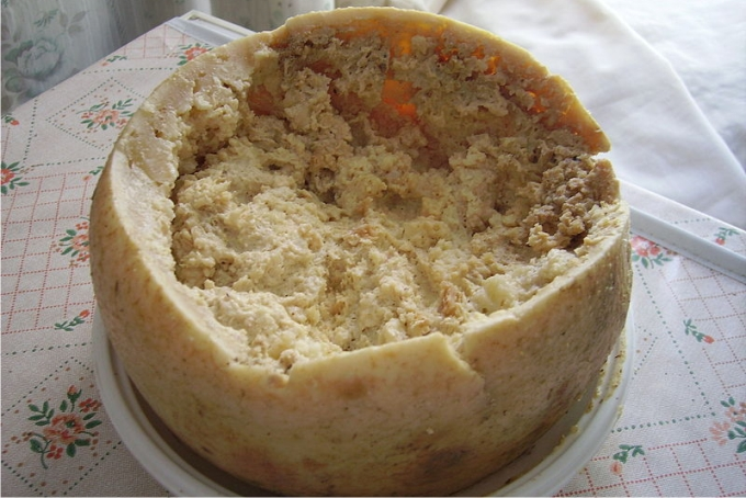 El casu marzu, delicioso queso típico de Cerdeña, conocido por el uso de larvas vivas de mosca para su fermentación. Foto: Shardan (CC)