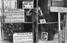 Phil Spector en 1975 (foto: Corbis)