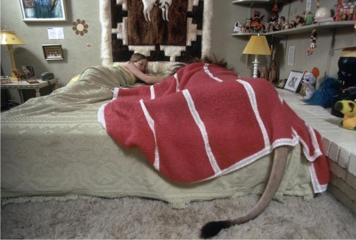 A Hedren le parecía una locura que su hija de catorce años durmiera con un león pero no tanto que saliese con Don Johnson, lo cual en el fondo era un poco lo mismo, falsa moral. Imagen cortesía de The LIFE picture collection/Michael Rougier.