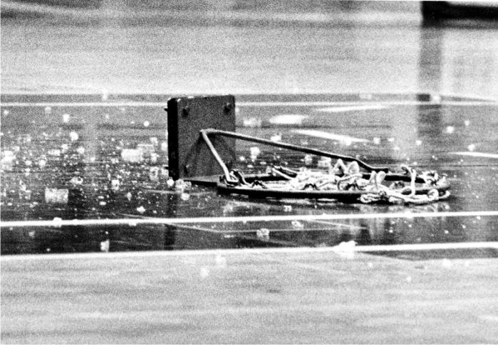 Spectrum, Philadelphia, 5/XII/1979. Foto: Steve Mix Archive (CC)