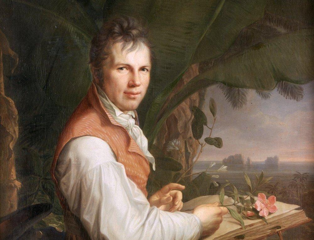 Alexander von Humboldt retratado por Friedrich Georg Weitsch, 1806. Imagen: DP.