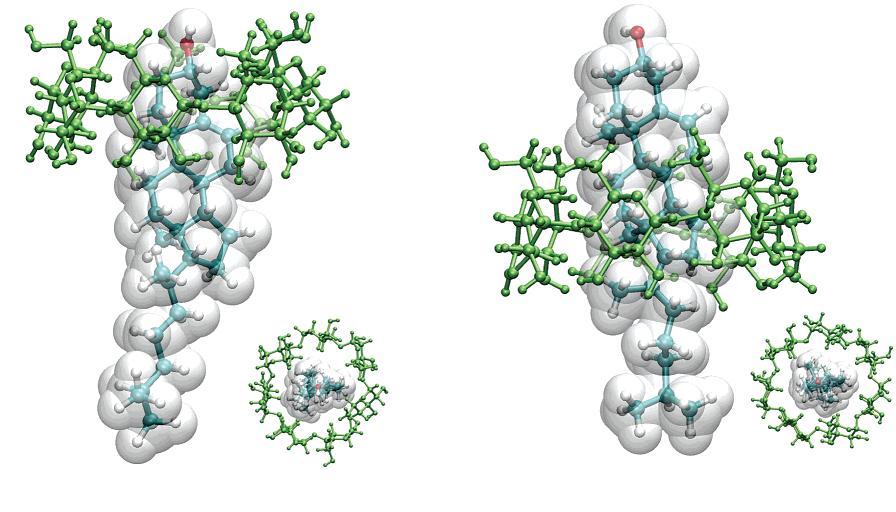 Imagen 4: Colesterol encapsulado por ciclodextrinas (Fuente: J. Phys. Chem. B. 2006, 110, 6372-6378)