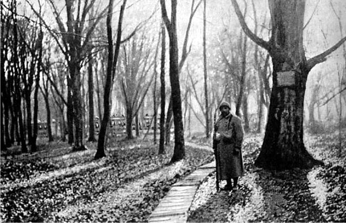 Un soldado francés en la entrada al bosque de Compiègne. Foto: DP.