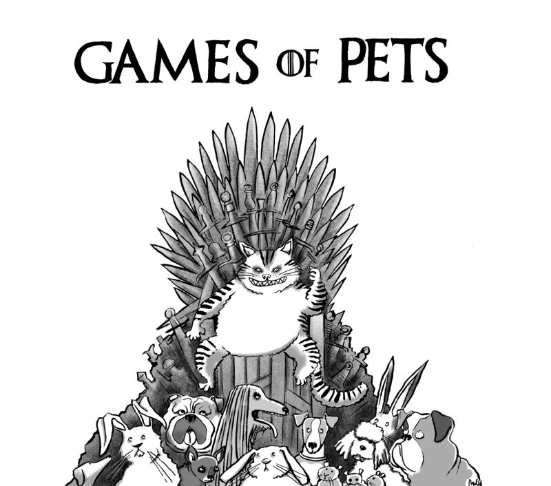 JD_Game of Pets_B