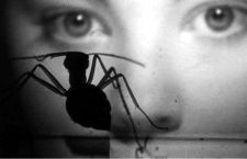 Saul Bass, las hormigas y los cinco minutos perdidos