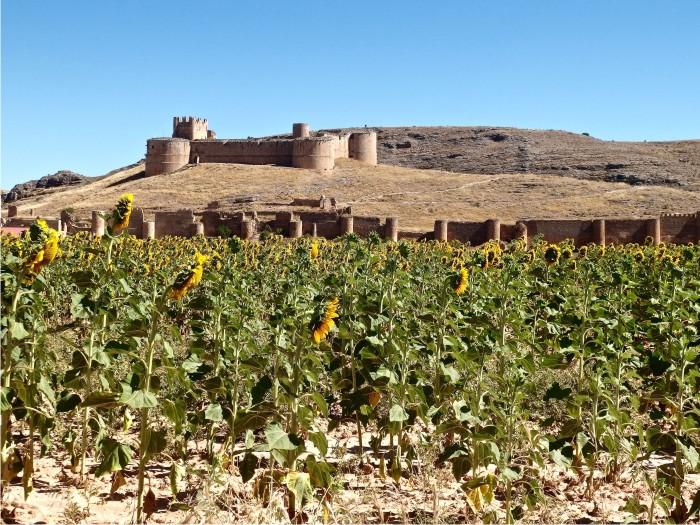 Castillo de Berlanga de Duero.