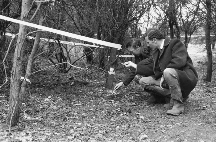 Detectives on Nomansland Common, near Wheathampstead, Hertfordshire, the day after the discovery of the body of 24-year-old Australian heiress Janie Shepherd, 19th April 1977. Shepherd had been missing since 4th February. David Lashley was later convicted of Shepherd's rape and murder. (Photo by Frank Barratt/Keystone/Hulton Archive/Getty Images)