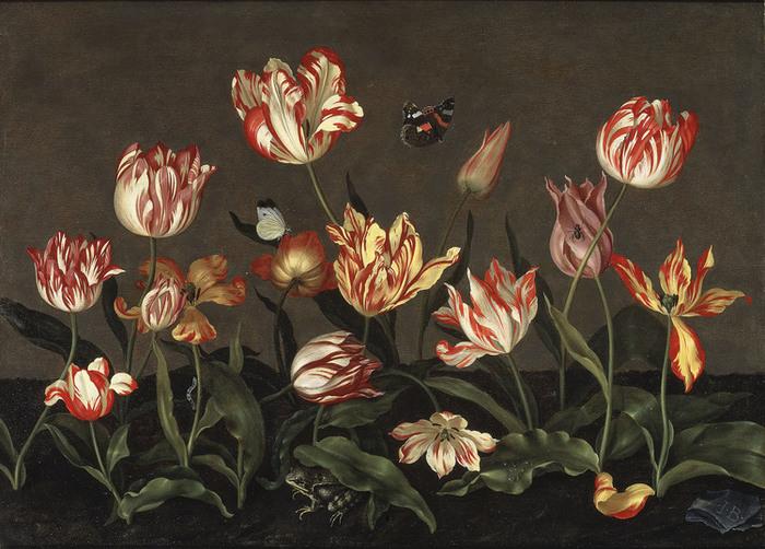 Johannes Bosschaert, Naturaleza muerta con tulipanes (c. 1630).