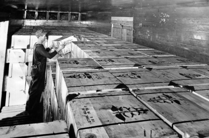 Worker loading the first full box carload shipment of penicillin in Sept. 1944. In June 1942 the total supply would treat only 10 patients. Penicillin was first tested for military use in the spring of 1943, and with mass production, it was used in combat zones by autumn 1943. (CSU_ALPHA_1102) CSU Archives/Everett Collection