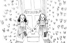Referedrum