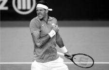 La épica de Del Potro y la Davis ponen fin a una esperanzadora temporada de tenis