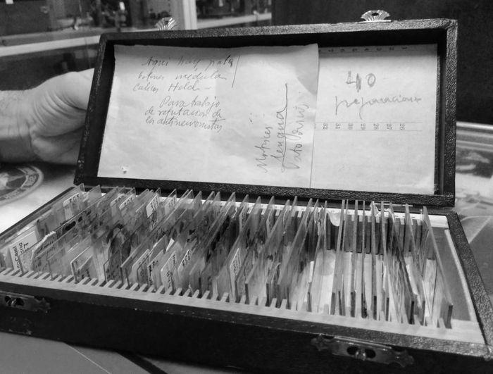 «Para trabajo de refutación de los antineuronistas», puede leerse en esta caja de preparaciones histológicas que se conserva en el Legado de Cajal. Imagen: Ángela Bernardo.