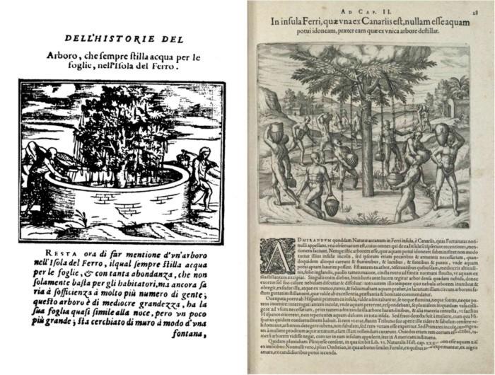 Grabados del Garoé, Benzoni 1572 y de Bry 1596. (1)