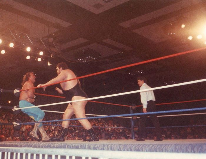 Andre the Giant vs. Jake the Snake Roberts 86289873