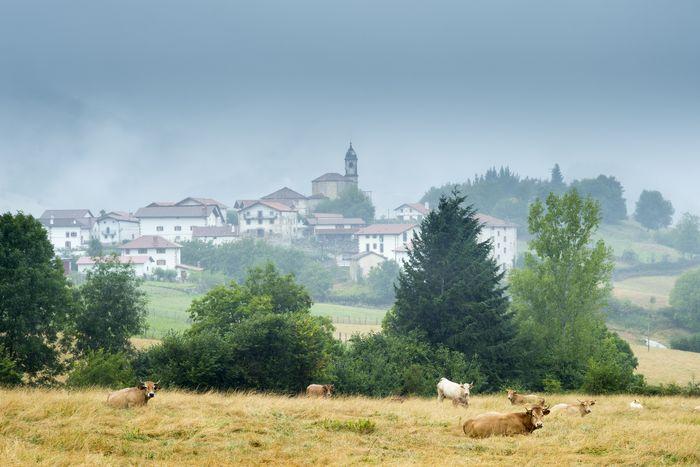Beintza Labaien in the mist Basque Country Spain. Photo by Tim Graham getty