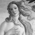 Simonetta y Amerigo: dos avispas en el escudo de los Vespucci