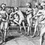 Breveelogio del sexo