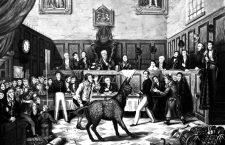 Pena capital animal