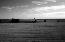 Visión rápida de Castilla: iglesias, trigo y girasoles