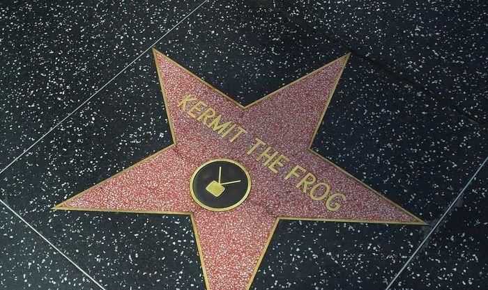 Kermit the frog hollywood walk of fame result
