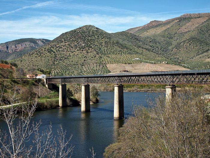 Puente internacional 1 result