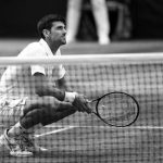 Simona Halep, Novak Djokovic y casi todo lo quenos deja Wimbledon 2019