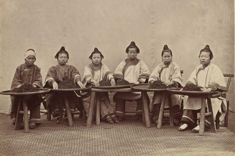 Women sorting tea by Lai Afong e1571220712382