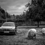 Ruta distópica por la España medio llena