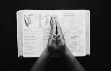 Contra la bibliofilia