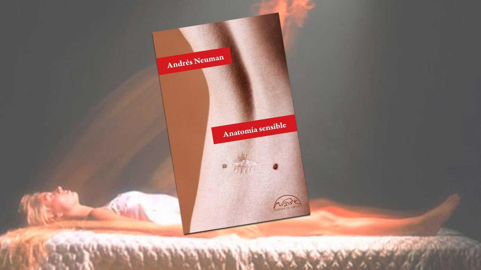 ANATOMIA SENSIBLE